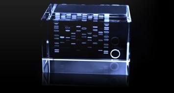DNA藝術家2