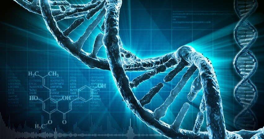 抗癌新曙光 國衛院發現「DKK2」基因