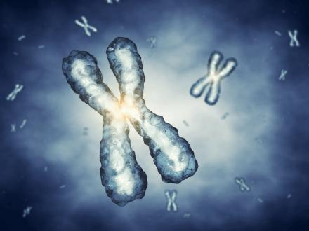 高齡生育別輕忽 胎兒染色體缺失風險