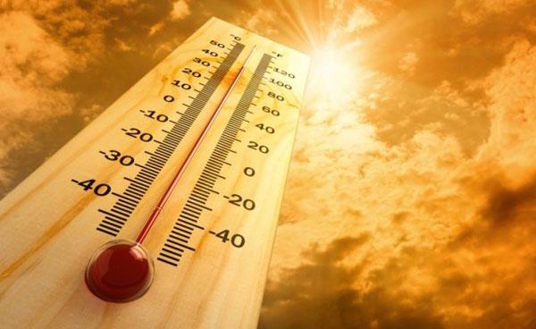 3招預防熱傷害!保持涼爽、補充水分、提高警覺