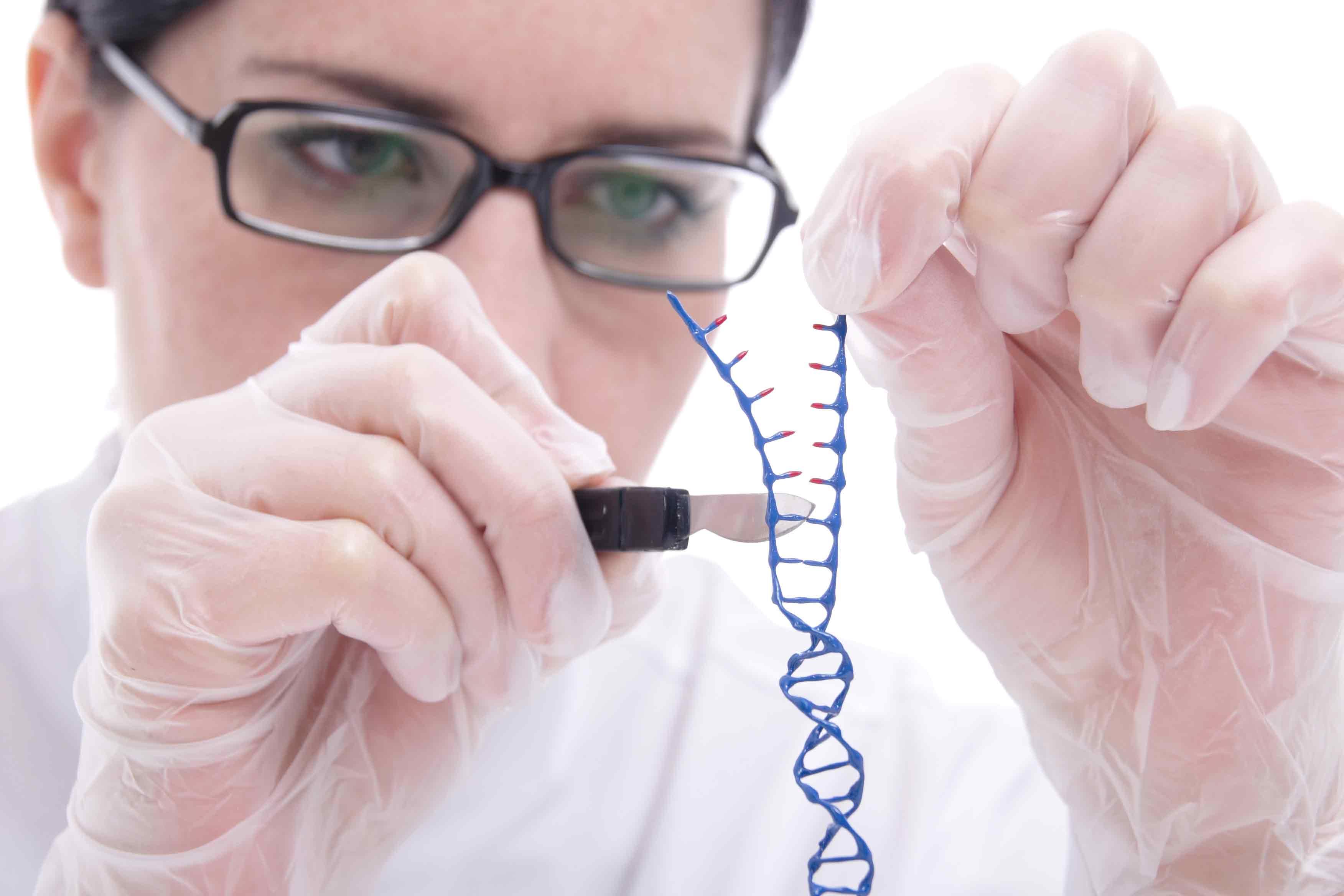 genome_web