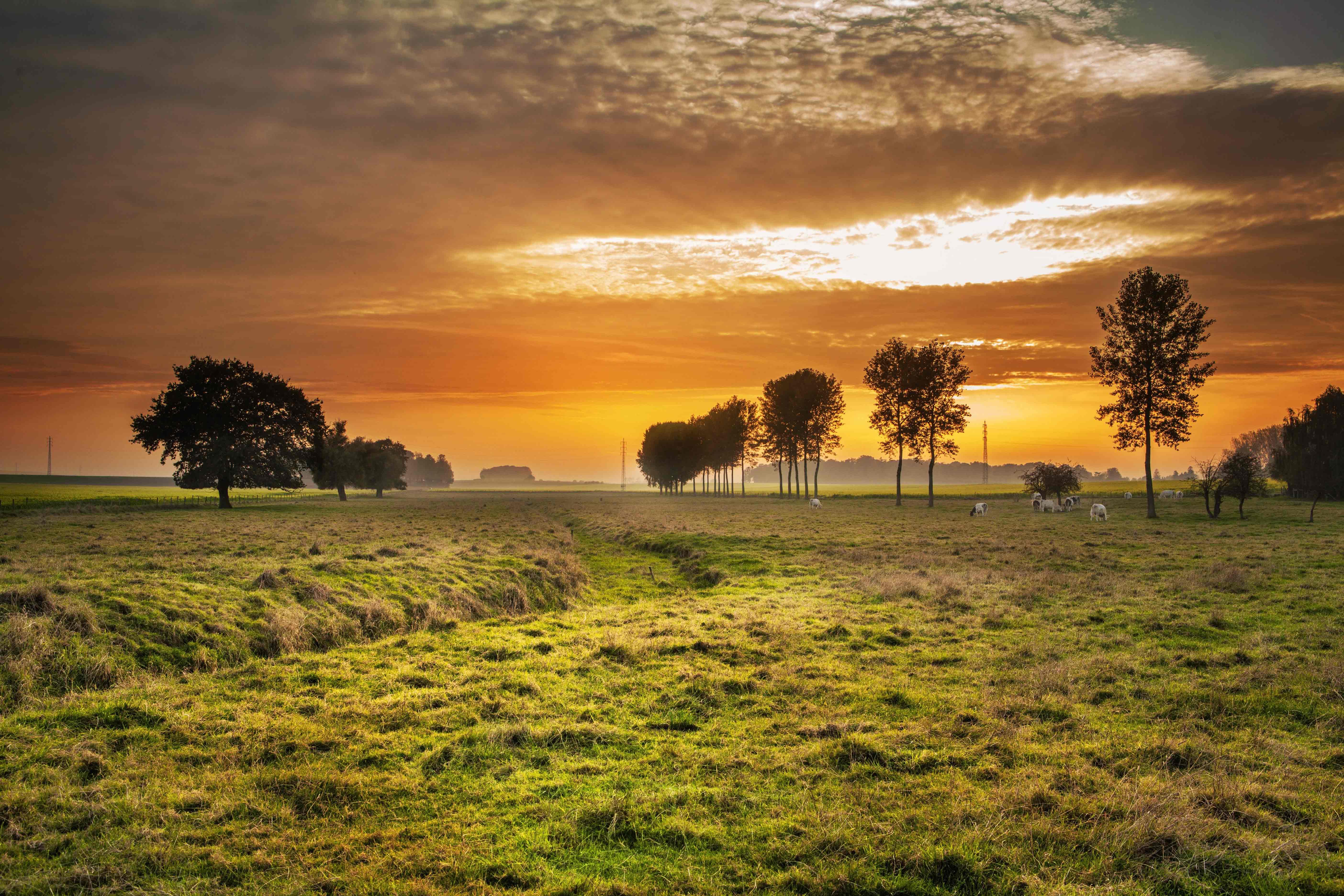 countryside-336686
