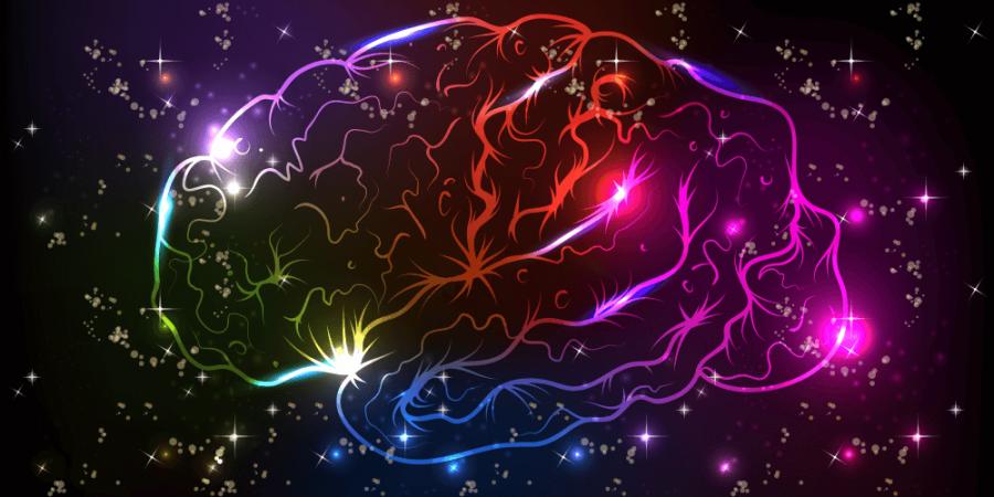 開拓大腦色彩新視界
