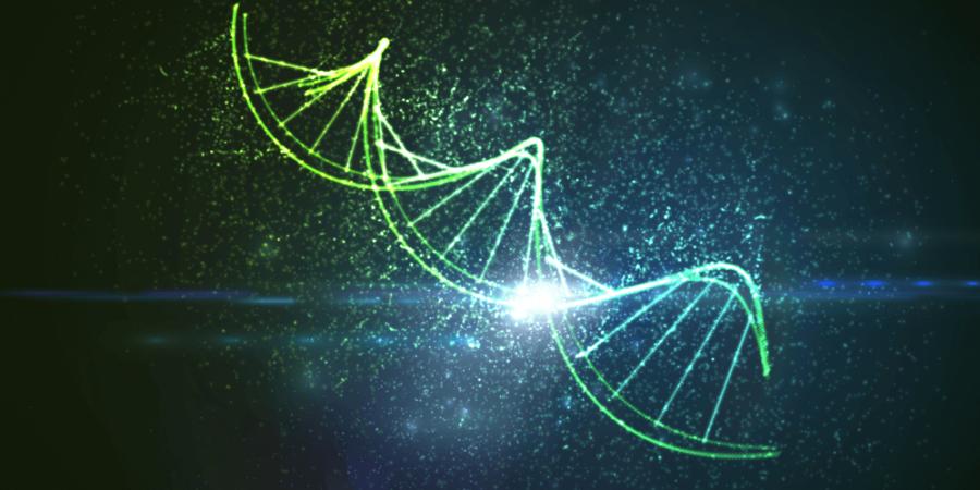 DNA ― 最終極的資訊儲存裝置?