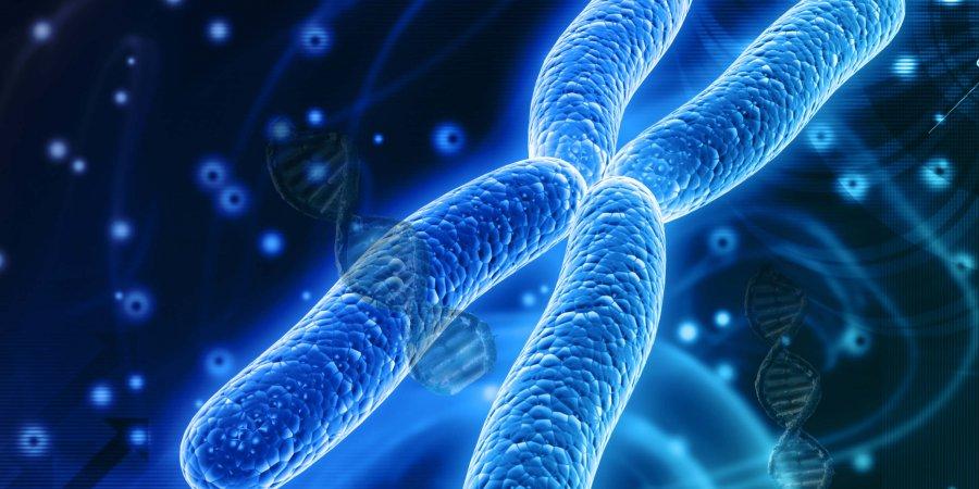 預知未來 基因檢測算出你的壽命有多長
