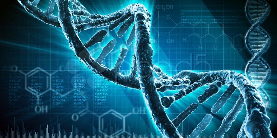 個人化基因編輯:CRISPR將帶來的改變