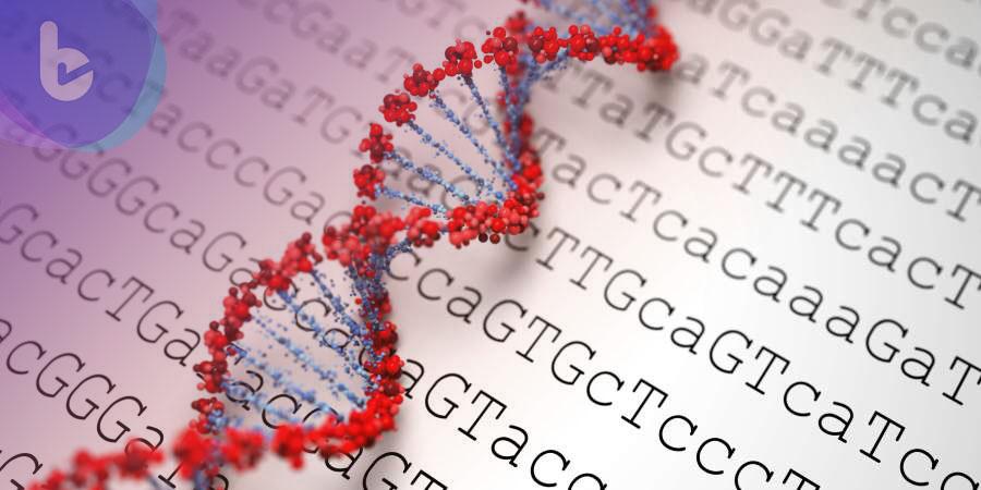 研究意外發現瘧疾蛋白質竟能成為癌症的敵人?