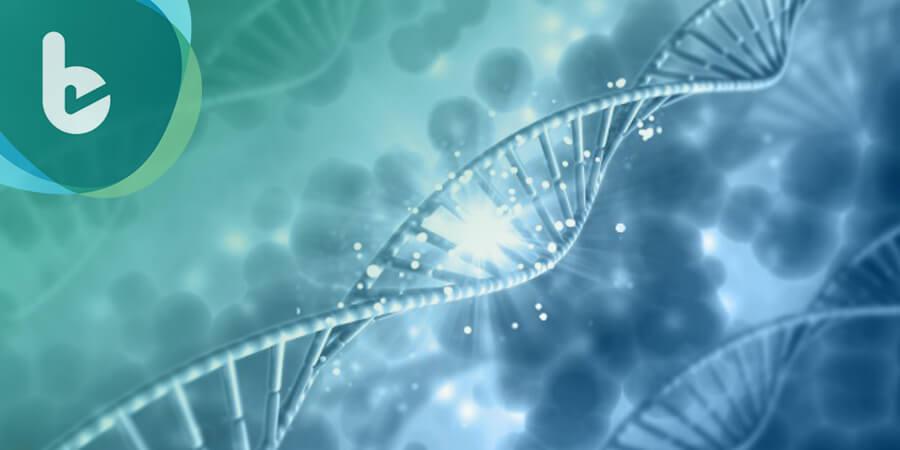 返老還童不是夢  科學家發現補充NMN可維持DNA修補機制