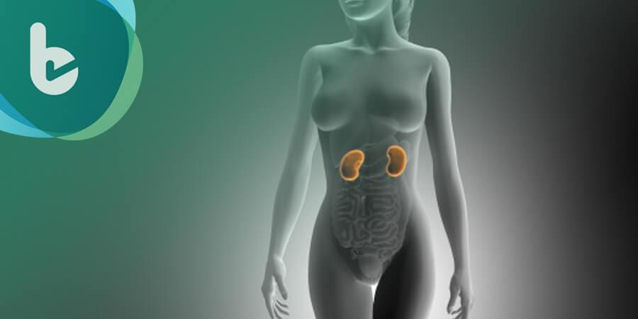 心腎糖病友多病纏身怎麼吃才好? 國內外醫學權威給予最新建議