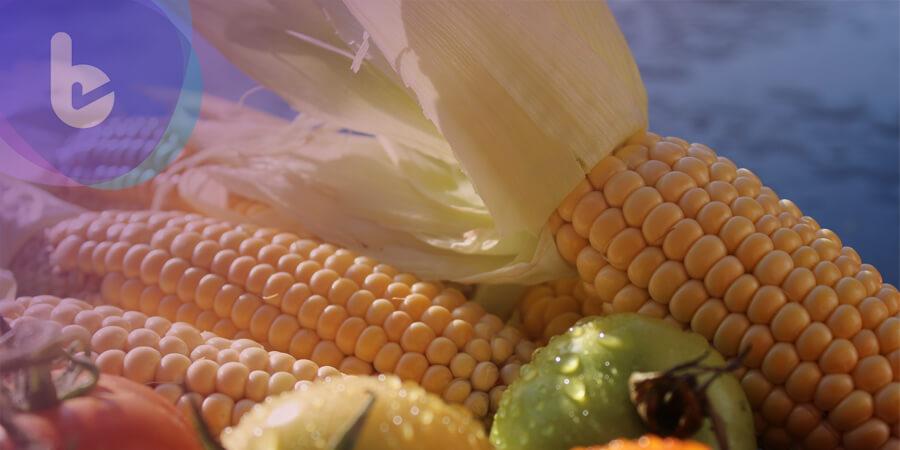 中元祭祀不忘健康 侯昌明報你知:紅藜麥、滴雞精、玉米罐頭