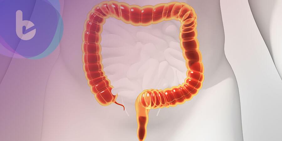 科學期刊:吃膳食纖維能讓人更健康的原因竟在腸道微生物…