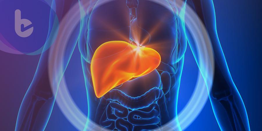 莫輕忽!B肝患者七年未追蹤竟罹肝癌送命