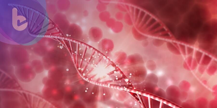 美國 FDA 批准通過第二款針對癌症的基因療法 Yescarta