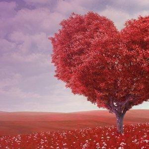 單國璽基金會「活出愛」節目 傳遞社會關懷火種散播人間愛