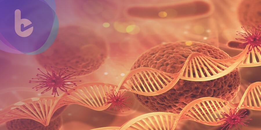 科學家發現人體「新器官」!竟與癌症轉移有關