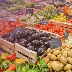 帶母親一起「蔬醒」!台灣蔬食.自然產品展連四日開展