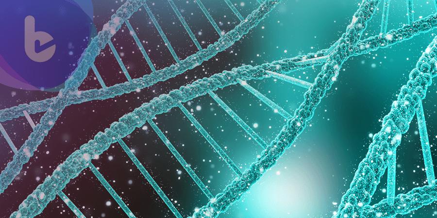 細胞修復受損DNA的機能  可能肇使癌症形成