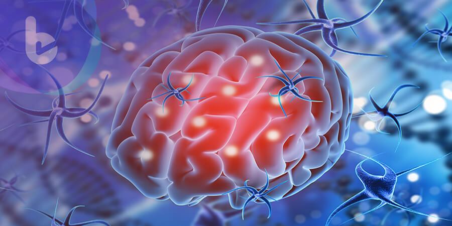 體外細胞實驗可替代活腦 有助精神分裂新藥發展!