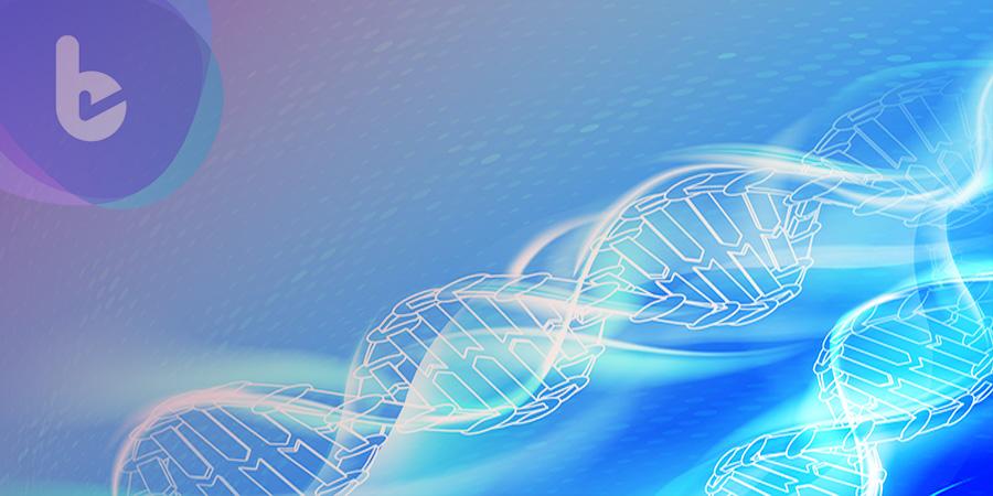 獻給初學者:如何選擇合適的熒光蛋白