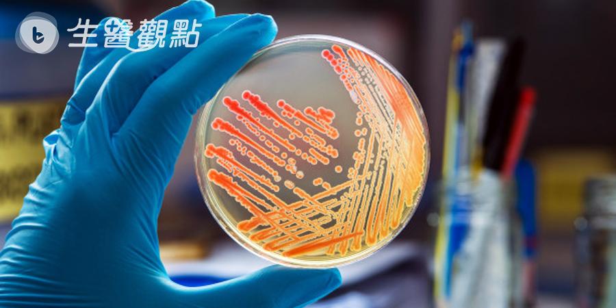 超級真菌成全球威脅 醫籲醫院加強防護