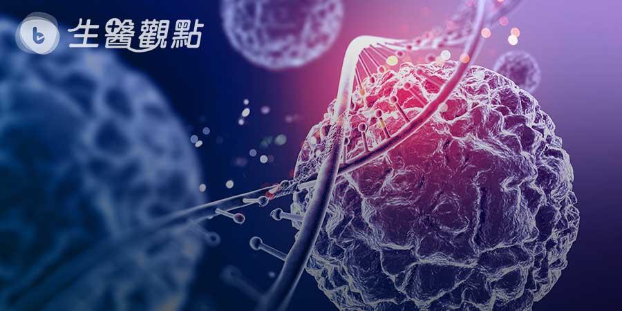 基質細胞將影響胰腺癌細胞的增殖與惡化